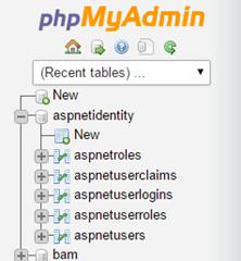 MySqlAspIdentityDatabase